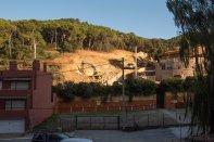 Tala d'arbres per procedir amb la construcció dels Jardins Sa Riera Living Setembre 2018