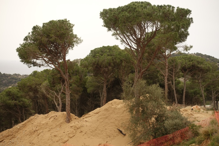 Dunes Montcal